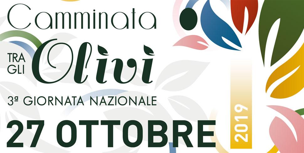 camminata-olivi-montepulciano-2019
