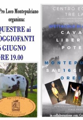 Evento Equestre ai Giardini Poggiofanti